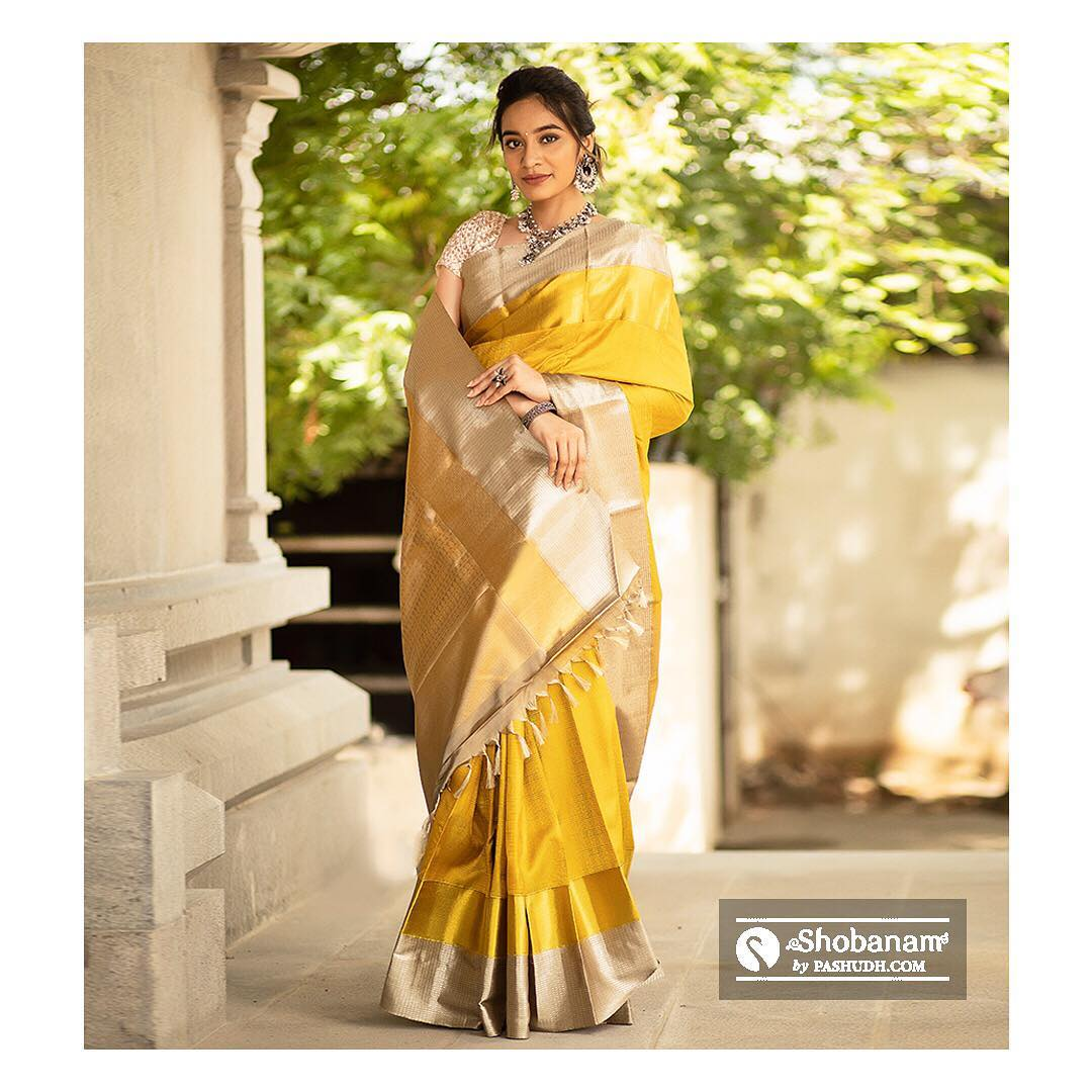 silk-saree-designs-2019 (3)
