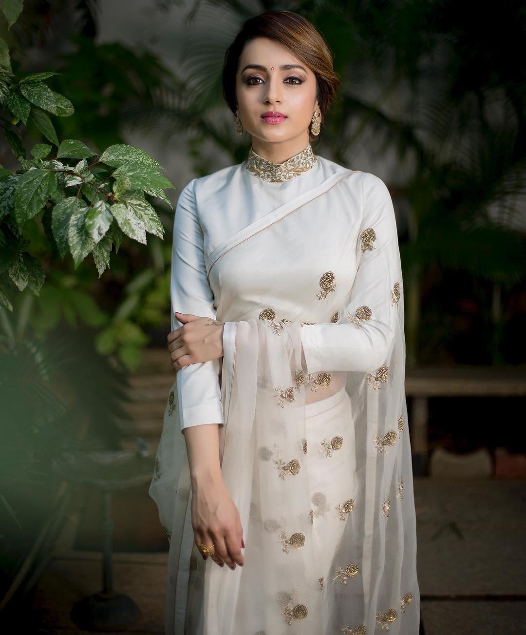 trisha-saree-2019 (1)