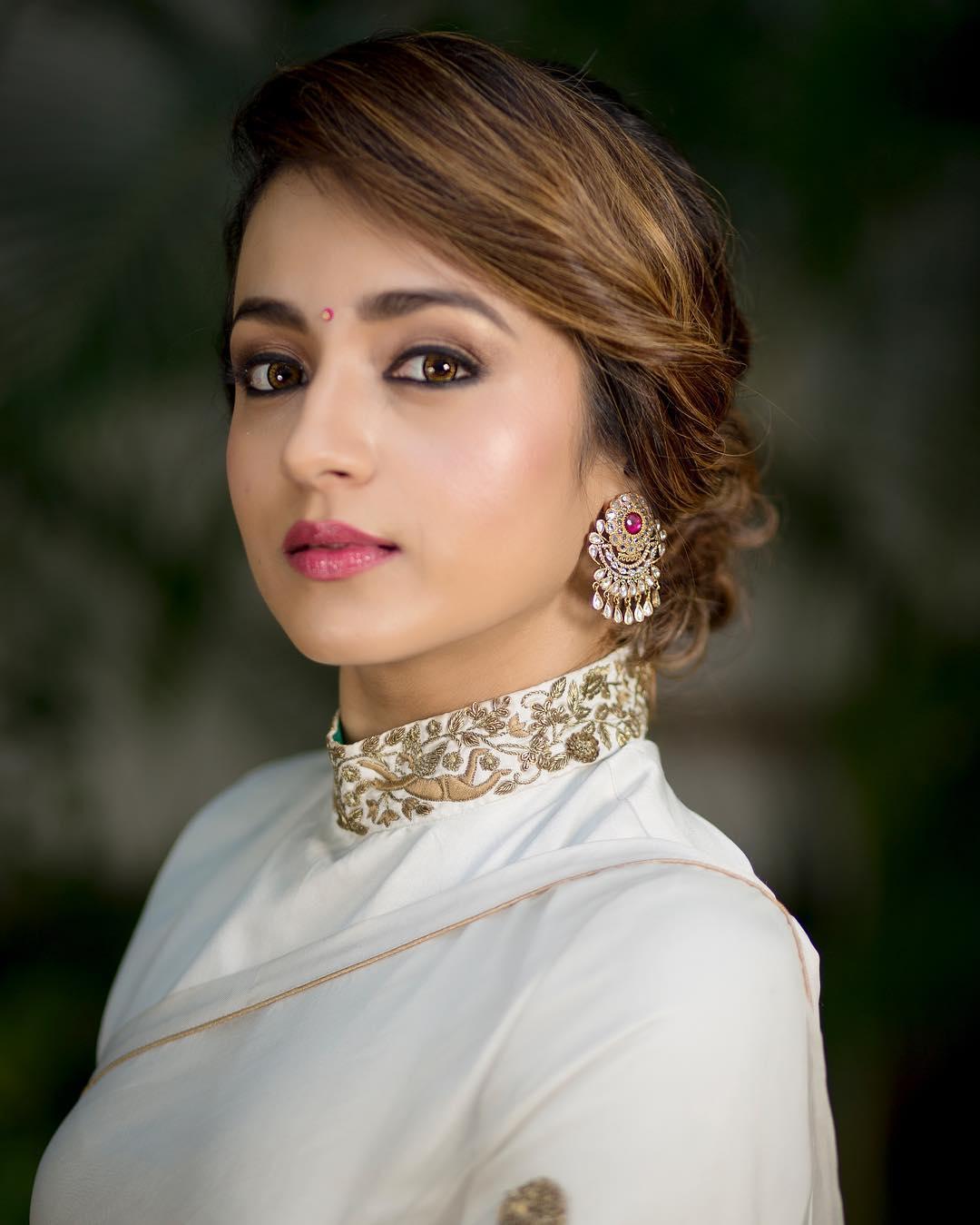 trisha-saree-2019 (2)