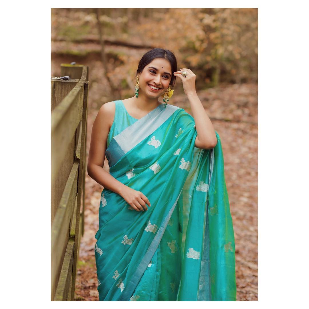 instagram-saree-influencer-swati-dixit (12)