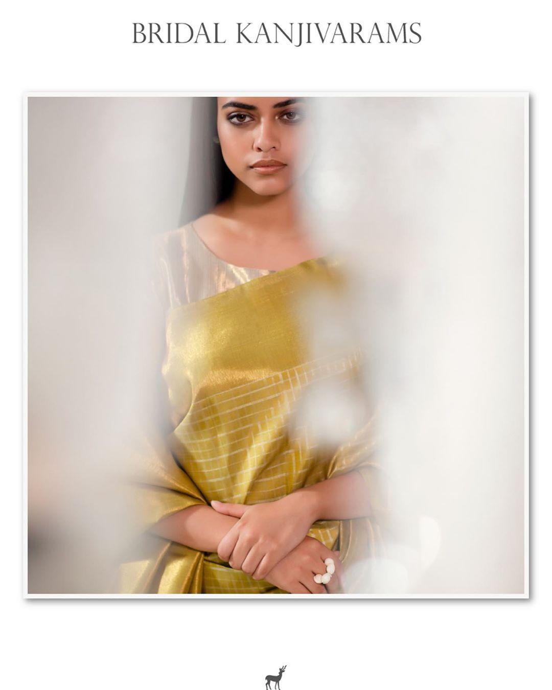 Best-Silk-Saree-Colors(15)