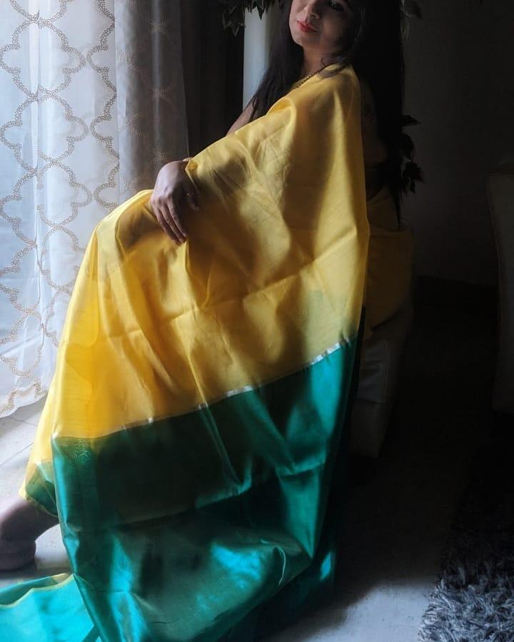 handloom-sarees-online-17